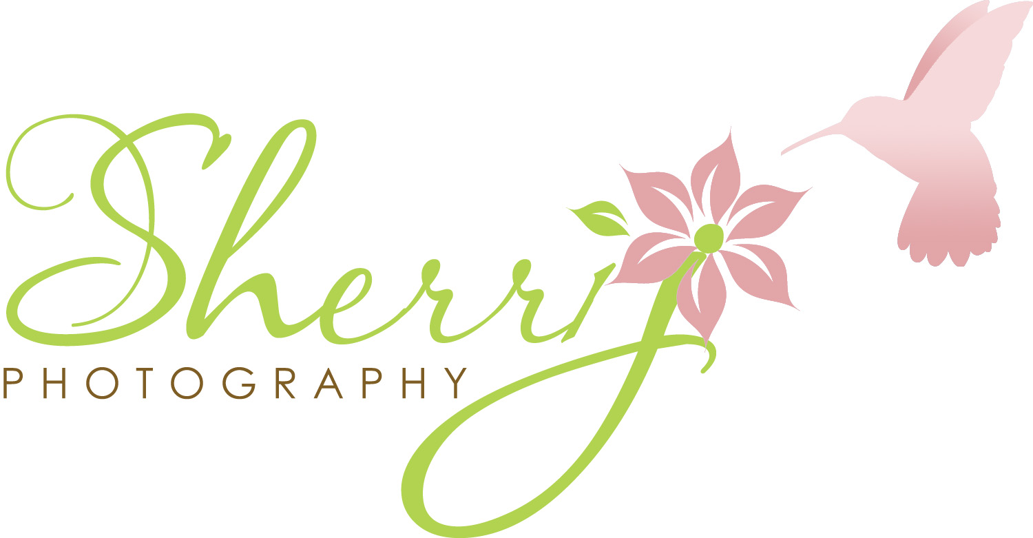 Offical Blog of Sherri J Photography